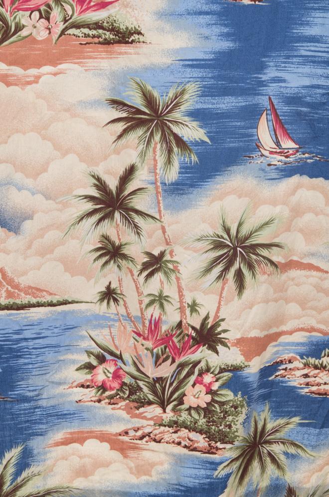vintagestore.eu_hawaiian_shirt_rjc_IGP0040